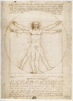 Etudes des proportions humaines 1487