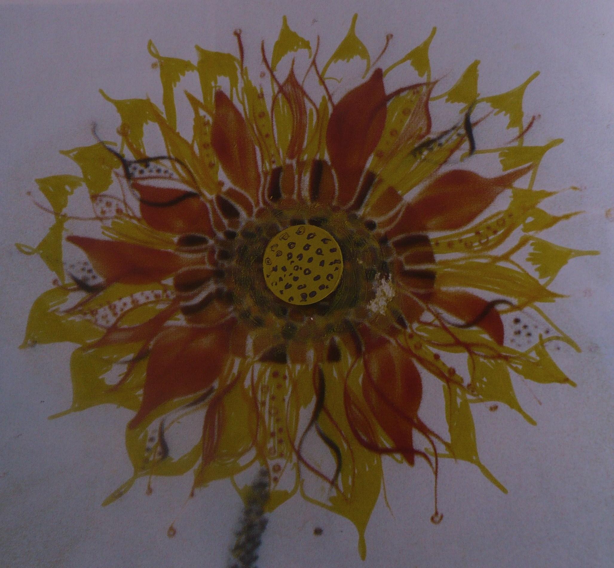 fleur-de-petunia-002.JPG
