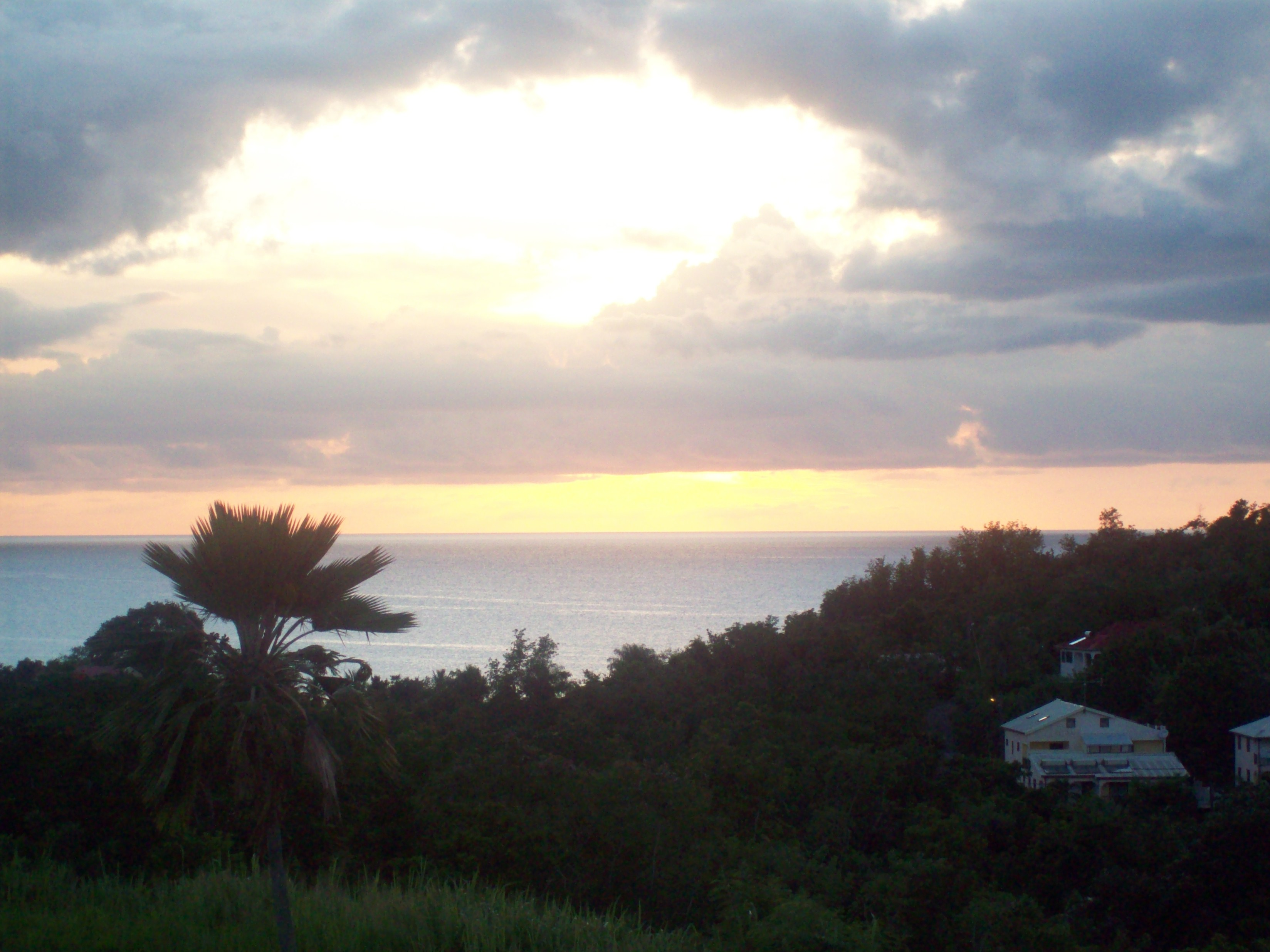 martinique-054.JPG