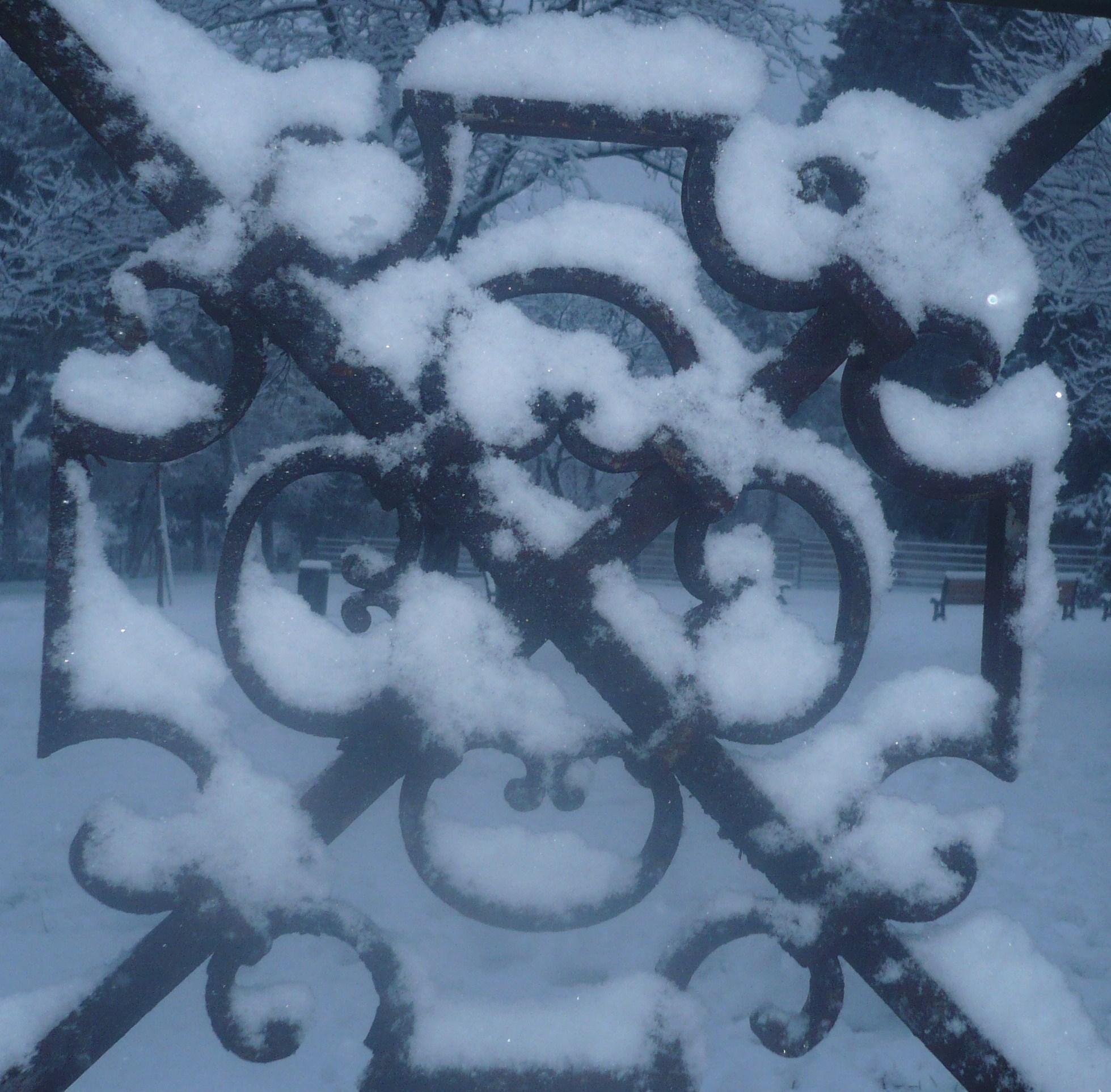 neige-8janvier-09-011.JPG