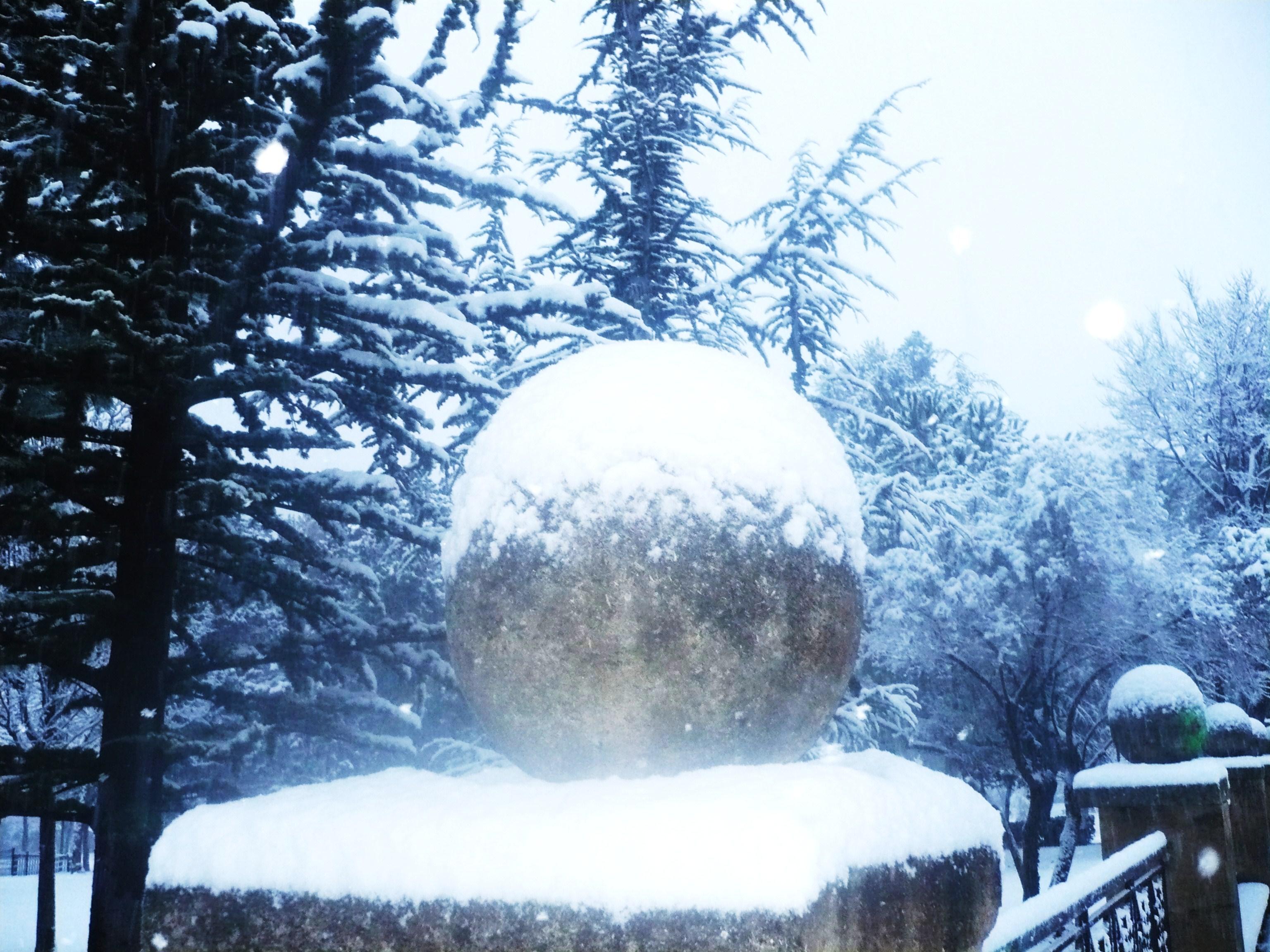 neige-8janvier-09-012.JPG