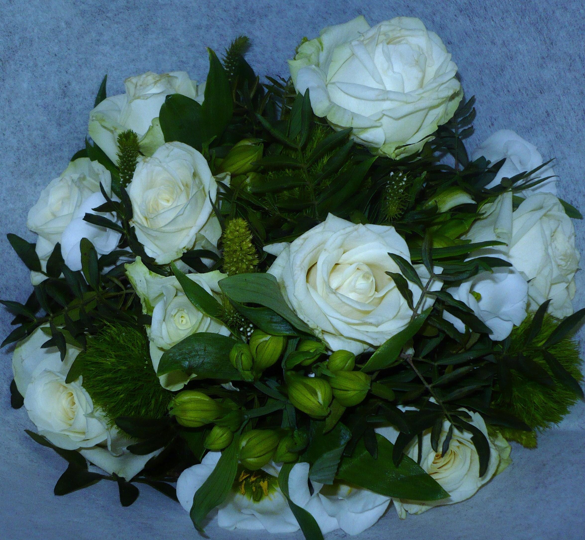 le-bouquet-aux-roses-blanches-et-la-minette-005.JPG