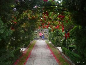 fête des jardins dimanche  le 6 juin 2010 045