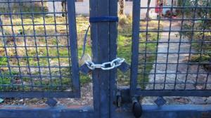 la petite maison d'en face janvier 2014 010