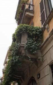 Milan  2015 248